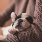 5 Astonishing Sleep Facts that Will Blow Your Mind